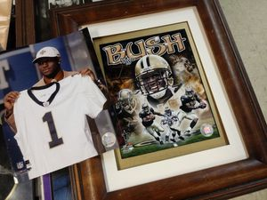 Reggie Bush bundle for Sale in Norfolk, VA