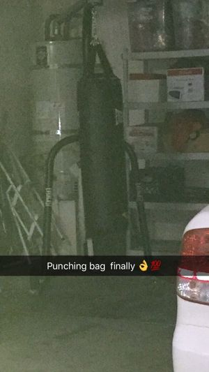 Punching Bag for Sale in Romoland, CA
