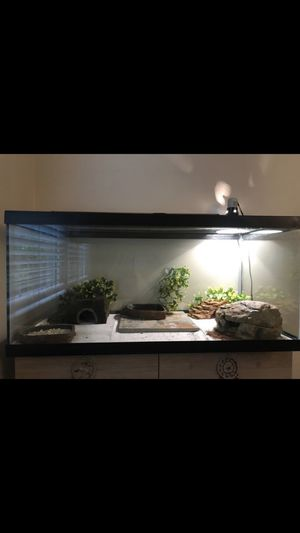 Reptile tank for Sale in Alexandria, VA