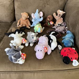 Beanie Baby Collection for Sale in Lake Worth, FL