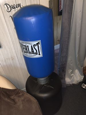Everlast standup punching back w/ gloves and speed bag for Sale in Medford, MA