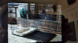 i Crate Kennel 1542DD for Sale in Wenatchee, WA