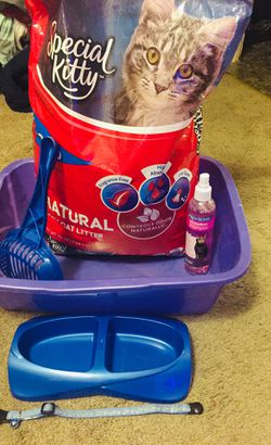 Various cat supply items for Sale in Wenatchee,  WA