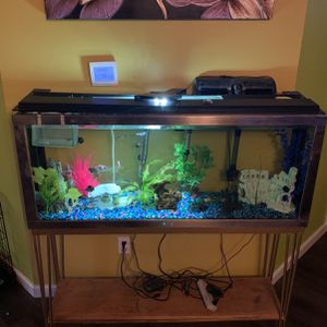FISH TANK for Sale in Auburn, WA