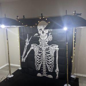 Backdrop Lighten Kit for Sale in Houston, TX
