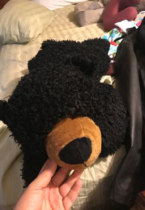Teddy pair for Sale in Fresno, CA