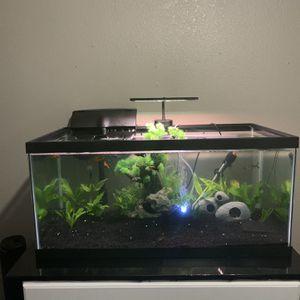 40 Gallon Fish Tank for Sale in Fresno, CA