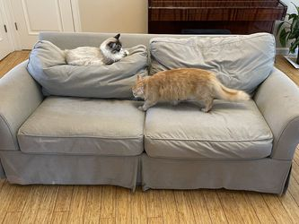 Free Sleeper Couch for Sale in Boston,  MA