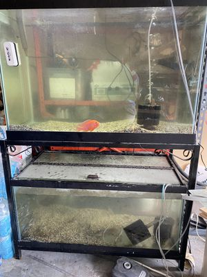 Fish tank for Sale in Kissimmee, FL