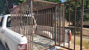 Cage for any type of animal for Sale in Menifee, CA