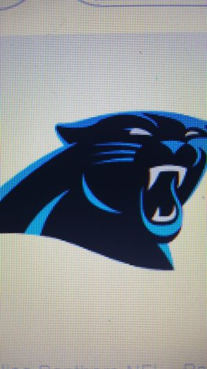 Panther vs Giants for Sale in Fuquay Varina, NC