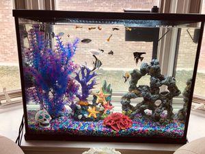 Beautiful full 40 ga Aquarium setup for Sale in Livonia, MI