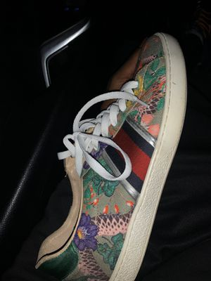 Size 11 Gucci's for Sale in Houston, TX