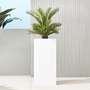 "CB2 32"" Tall High Gloss Planter for Sale in Washington, DC"