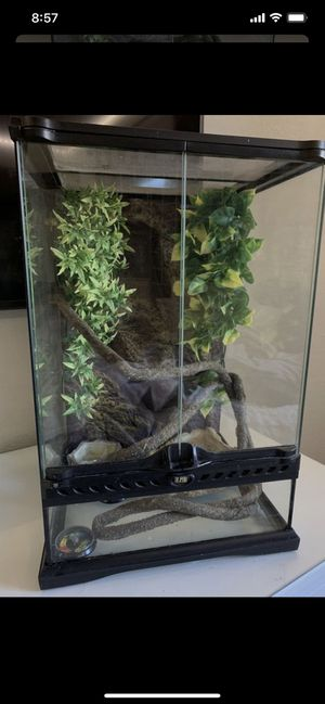 Terrarium for Sale in Turlock, CA