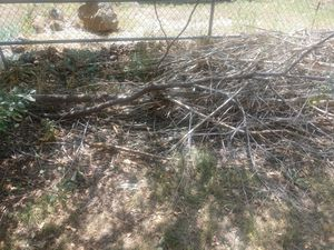 Free fire wood kindling for Sale in Pinetop-Lakeside, AZ