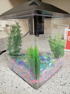 Aqua Culture 1 Gal Fish Tank with Filter for Sale in Bloomingdale, IL