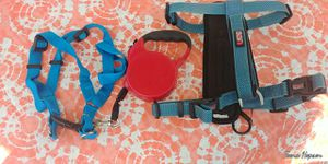 Dog clothes and long harness for Sale in Bristol, VA