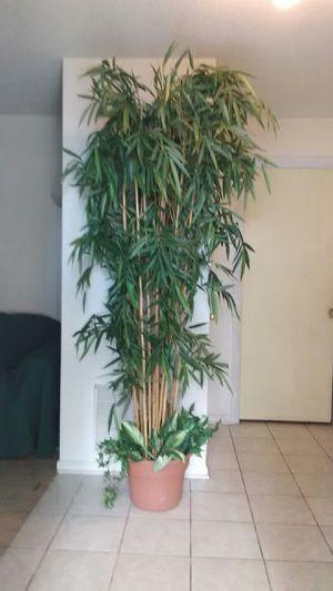 8 foot artificial bamboo decorative plant for Sale in Orlando, FL