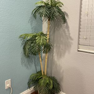 Artificial Plant for Sale in Chino Hills, CA