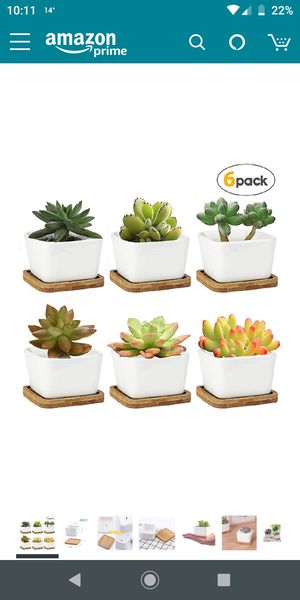 Brand new succulents pots set of 6 for Sale in Piscataway, NJ