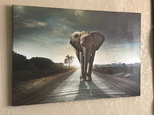 2x3ft large Elephant Canvas for Sale in San Antonio, TX