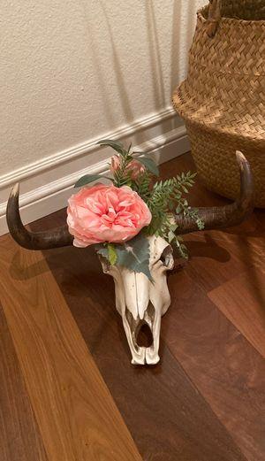 Cow head for Sale in Bellflower, CA