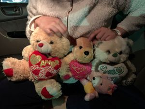 Teddy bears for Sale in Bronxville, NY