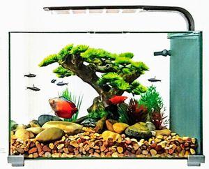 TopFin Retreat Aquarium/5 gal Fish Tank for Sale in Fircrest, WA