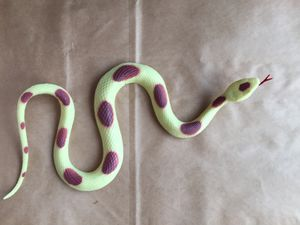 Snake toy collection for Sale in Queens, NY