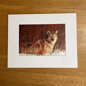 Art Wolfe 11x14 Matted Wolf Photo for Sale in Issaquah, WA