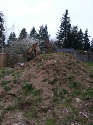 Free dirt, can load for you for Sale in Shoreline, WA