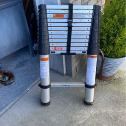 Expandable ladder for Sale in Vancouver,  WA