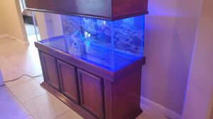 120 gallon fish aquarium for Sale in Humble, TX