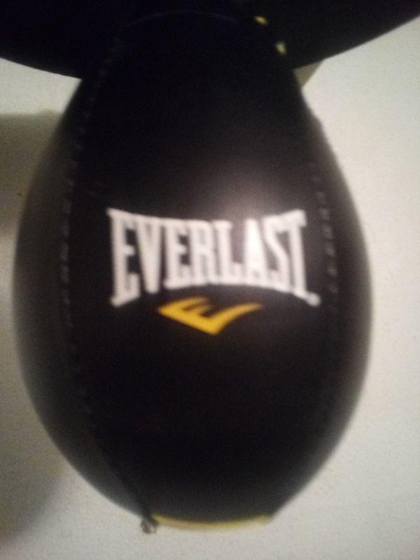 A speed bag, in good shape, model is Everlast