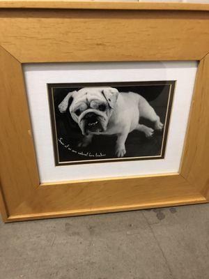 Bull Dog Picture for Sale in Yorba Linda, CA
