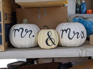 Mr. & Mrs. Pumpkins for Sale in Whittier, CA