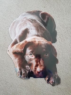 Chocolate brown Labrador retriever puppy dog pet steel metal sign for Sale, used for sale  Vancouver, WA
