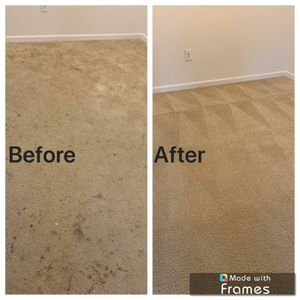Carpet & Upholstery Cleaning for Sale in MONTGOMRY VLG, MD