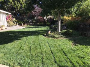 Gardening maintenance for Sale in Redwood City, CA