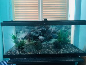 20 gallon long fish aquarium tank for Sale in Brooklyn, NY