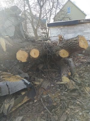 Free fire wood for Sale in Cleveland, OH