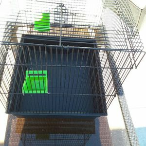 """Small Bird Cage,15""""×14""""and 17"""" High Nothing wrong for Sale in Port Richey, FL"""