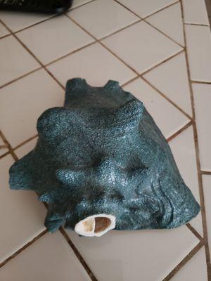 Conch sea shell for Sale in San Jose, CA