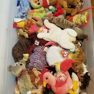 Wide Range Of Beanie Babies! for Sale in Fort Lauderdale, FL