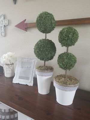 Topiary tree for Sale in Rosenberg, TX