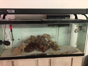 Fish tank for sale 50 gallon for Sale in Miami, FL