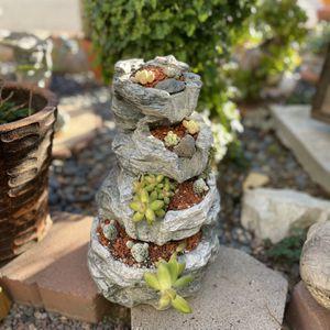 Succulent Arrangement for Sale in Rancho Dominguez, CA