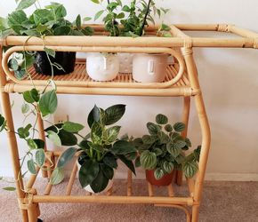 Bamboo Plant Cart / Stand With Wheels for Sale in Long Beach,  CA
