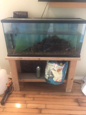 Large fish tank with stand for Sale in Los Angeles, CA